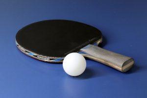 Choisir Table De Ping Pong